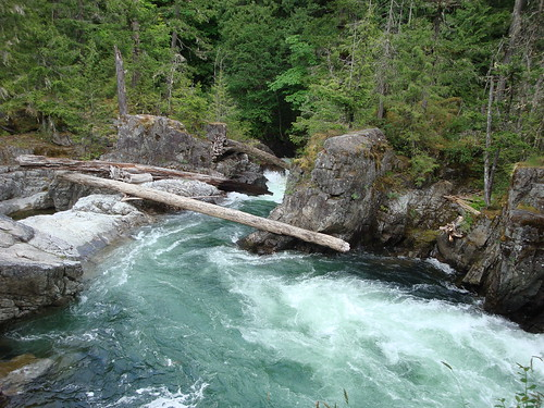 May 29 2012 - Little Qualicum Falls