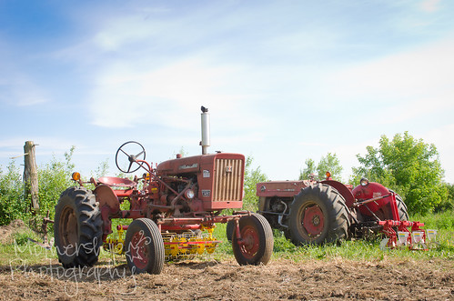 Roots and Shoots Farm visit - tractors