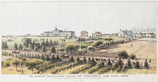The Ontario Agricultural College and Experimental Farm, Guelph, Ontario / Collège de l'agriculture et ferme expérimentale de l'Ontario, à Guelph