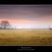 Serenity by Ryan Mark Ostrea Photography