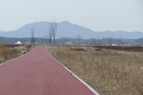Yeongsan River Cycle Path