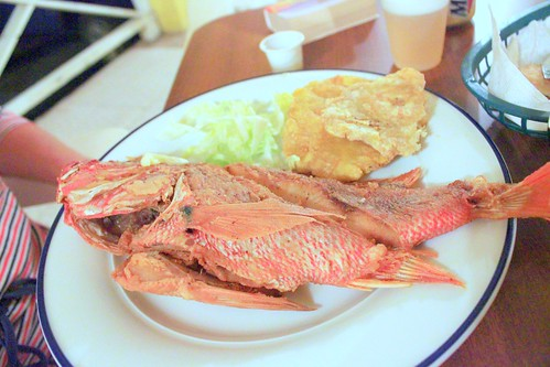 whole fried snapper (chillo) at TIto Bloque