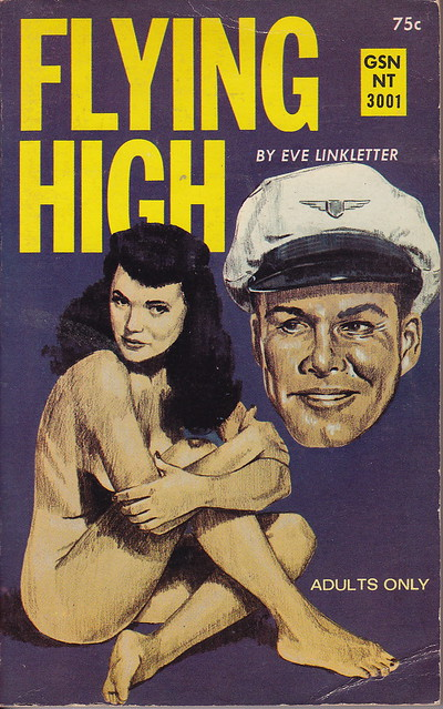 Pop Sensation: Paperback 513: Flying High / Eve Linkletter