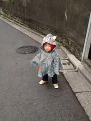 妻撮影「ポンチョとらちゃん」(2012/4/11)