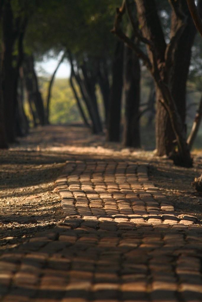 Pathway_Khijadiya