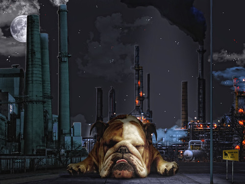 [フリー画像素材] グラフィック, フォトレタッチ, 犬・イヌ, 工場, ブルドッグ ID:201204180000