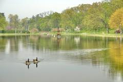 The Italian Lake