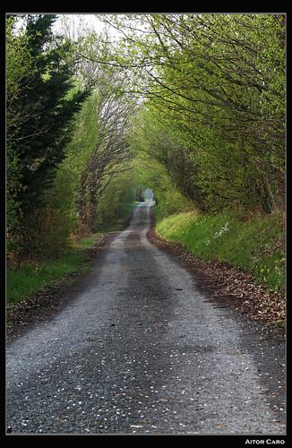 Camino a Betussou