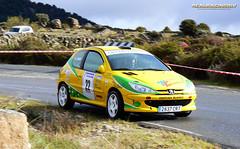 "III RallySprint ""San Segundo"" 2012 - Alfredo Alonso Santiago/Javier Redondo Sánchez - Peugeot 206 XS"