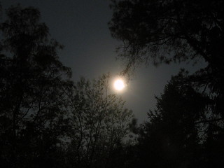 supermoon in gniazdowo, poland
