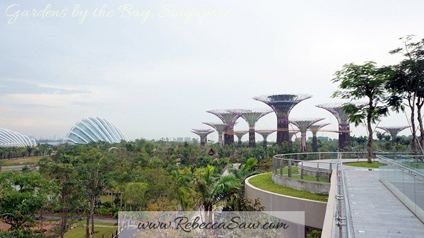 gardens by the bay, singapore (18)