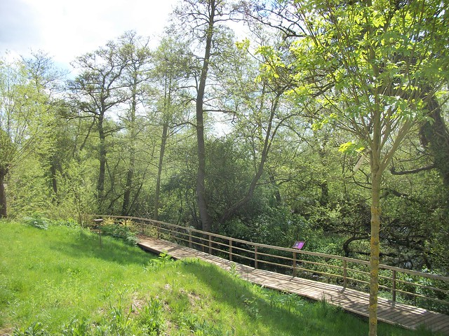 River side walkway in the RSPB Flatford Wildlife Garden