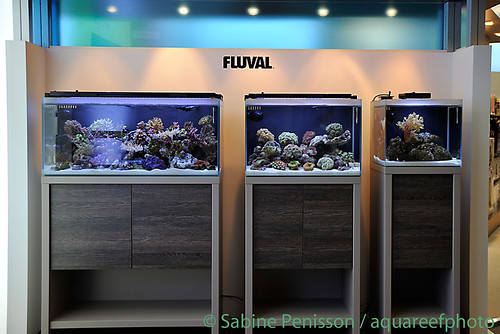 aquarium eau de mer fluval. Black Bedroom Furniture Sets. Home Design Ideas