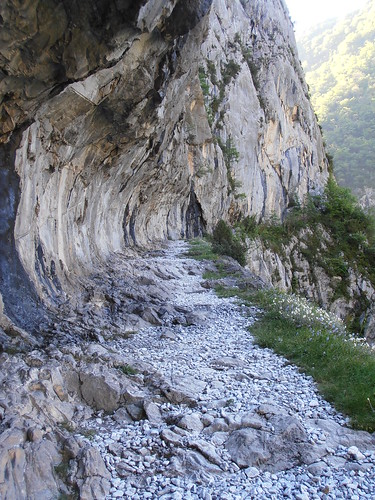 LA MATURE (chemin) 031
