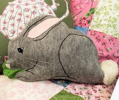 Bunny Pyjama Case(1)