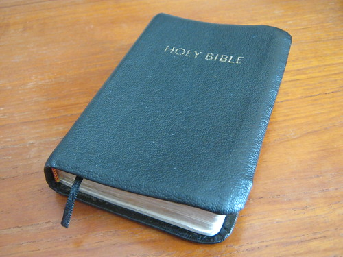 Bible by Mike Johnson