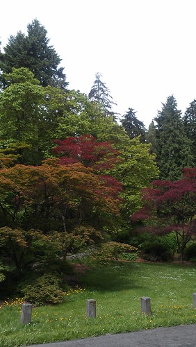 The Arboretum is quickly becoming one of my favorite places by christopher575