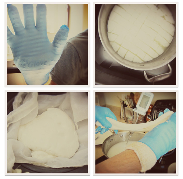 cheese making collage