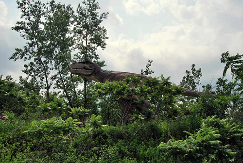 Dino - looming