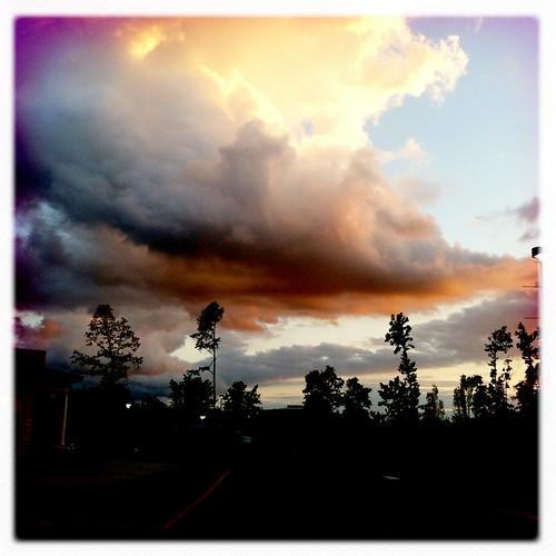 sunset sky sun tree sol clouds atardecer nubes árbol iphone iphoneography hipstamatic