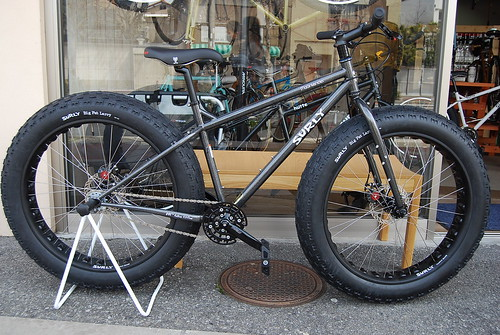 Surly Moon Lander