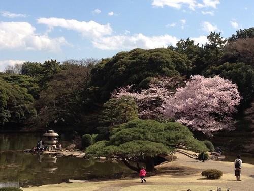 Shinjuku National Garden