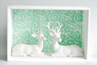 Deer in display box