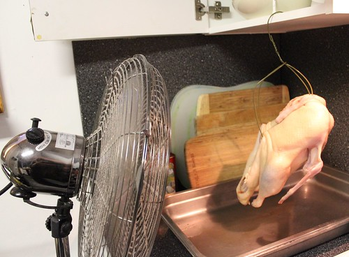 Peking Duck at Home (drying)
