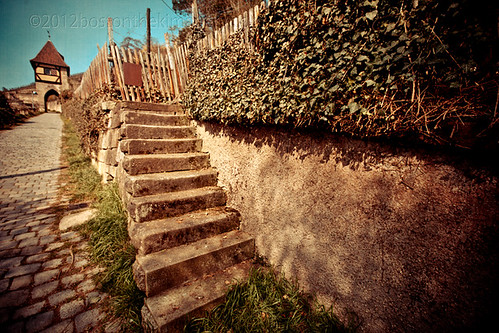 Rustic Steps Going No Where