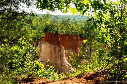 nature georgia canyon providencecanyon stewartcounty thesussman georgiaslittlegrandcanyon sonyalphadslra550 sussmanimaging