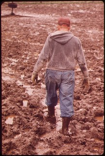 John Dolezal slogs through mud on his farm near Bee Nebraska. Rain was twice the normal amount for the area this year greatly adding to the problems of local farmers, May 1973