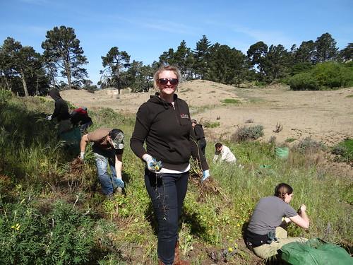 VolunteerMatch staff getting dirty while volunteering in San Francisco.