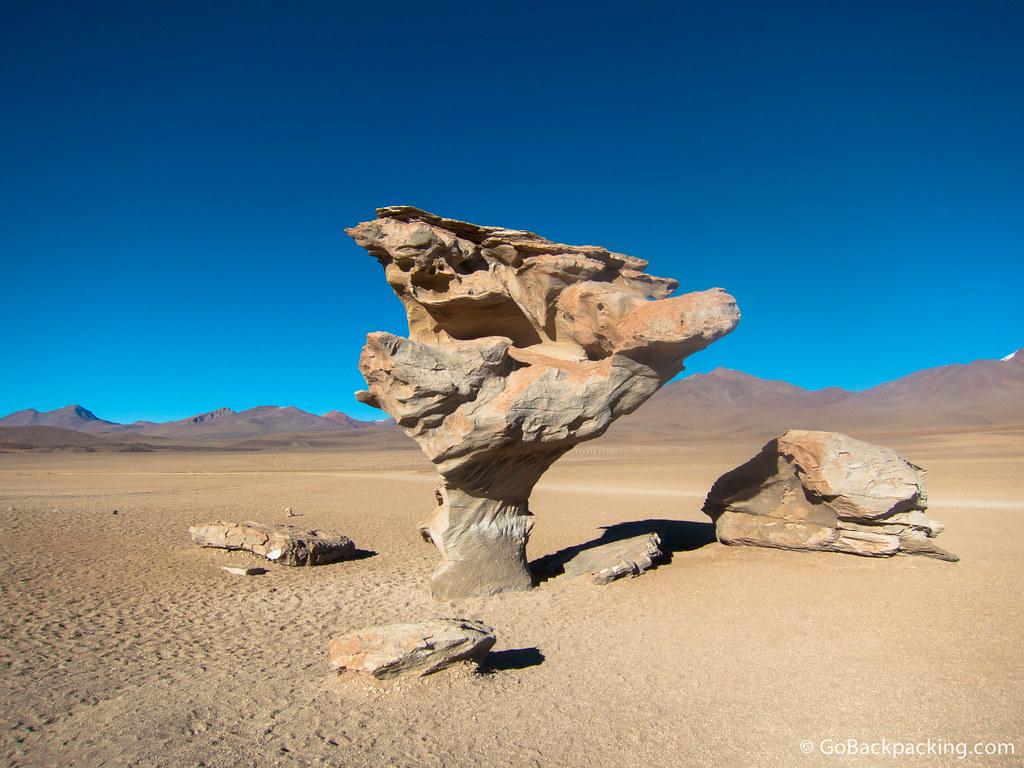 """Árbol de Piedra (""""Stone Tree"""")"""