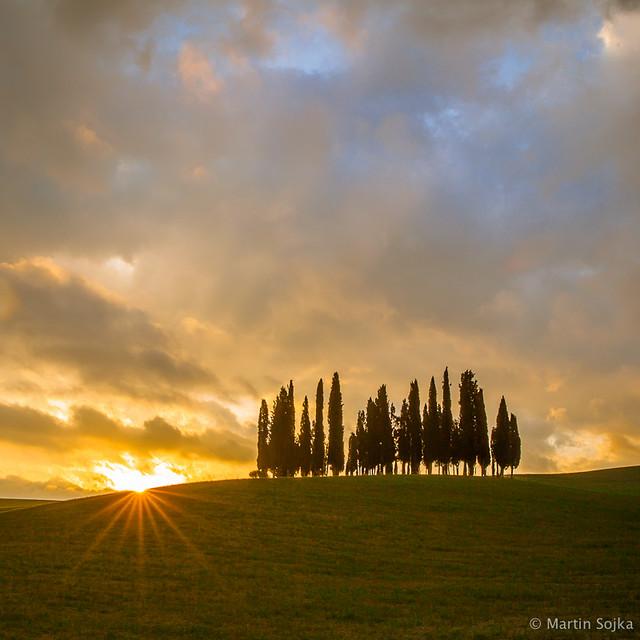 Val d'Orcia, Toscana #14 - Cypress Trees ~ Italy
