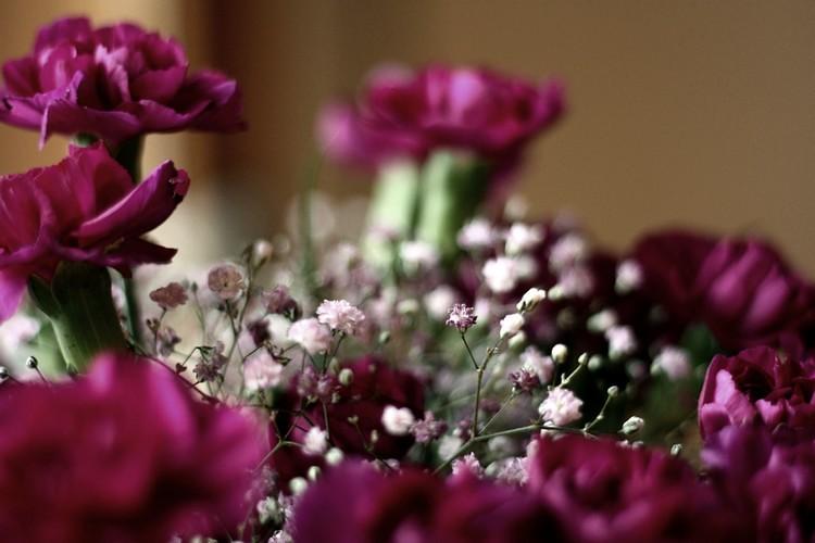 kukkii2