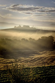 Tuscany Morning Glory | Val d' Orcia
