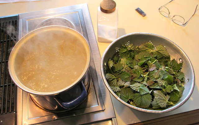 Water coming to rolling boil for nettle pesto