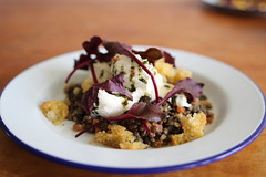 Warm Lentil Salad with Mozzarella and Croutons, with Balsamic Vinaigrette