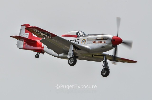 "Down the Centerline Series: North American P-51 Mustang ""Val-Halla"""