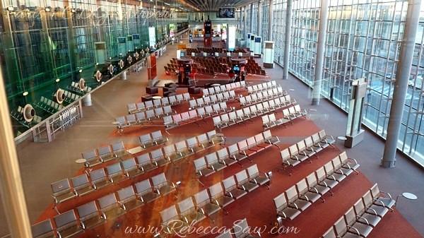 Paris - CDG Airport  (13)