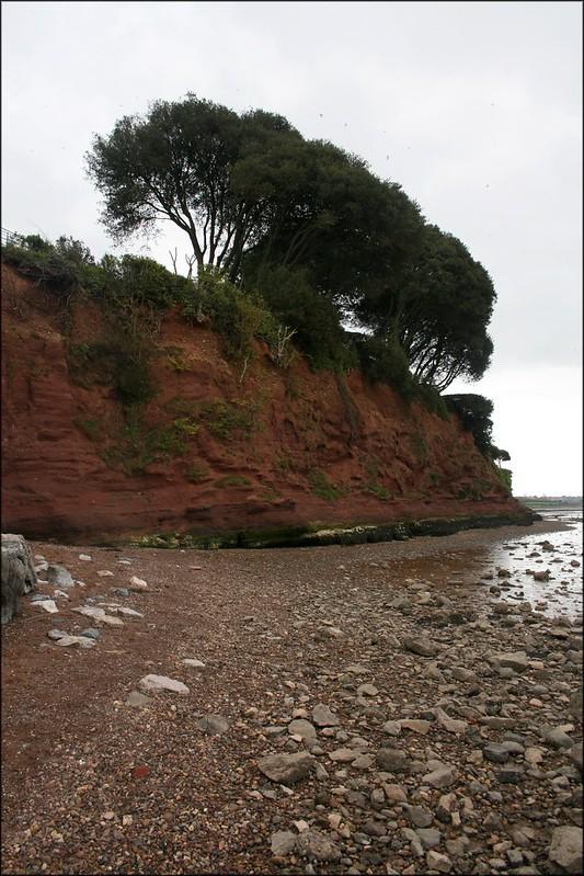 The Exe Estuary at Lympstone