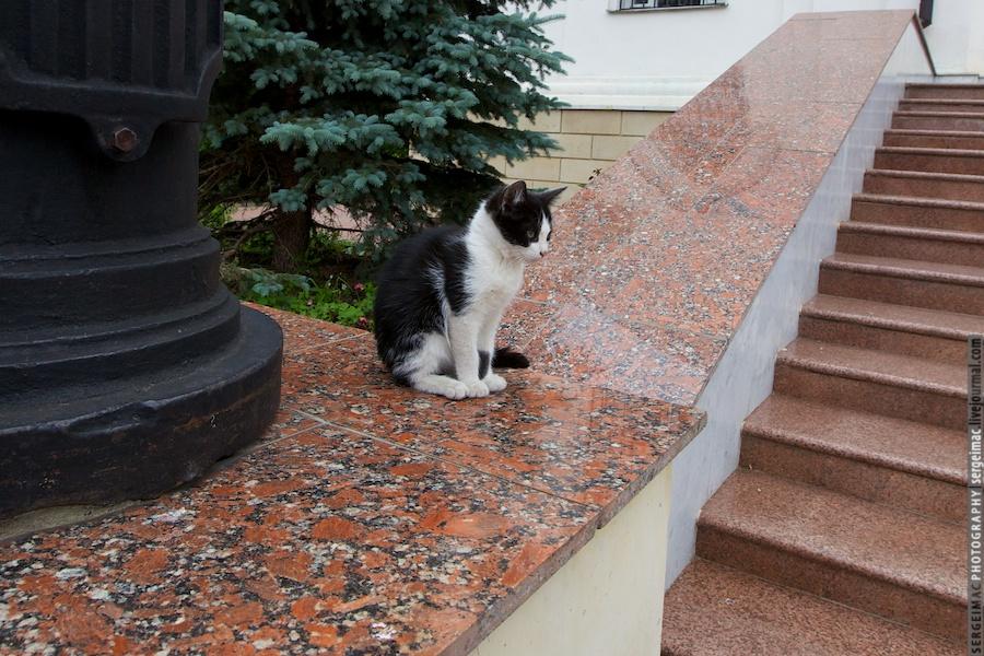 20120526_LIPETSKRUS_0030