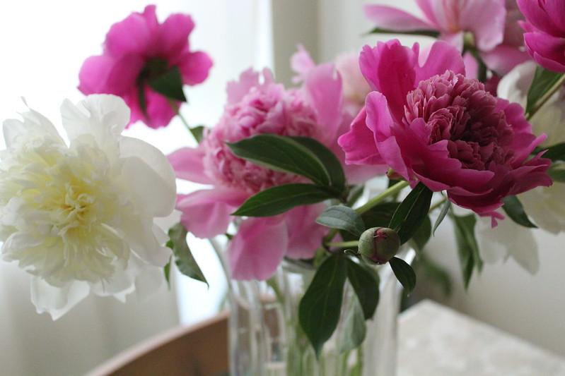 Peonies in a Bohemian Crystal Vase
