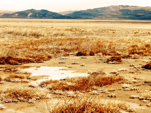 california ca orange usa lake abandoned water landscape sadness missing warm sad desert bad dry hidden oasis memory april marsh shame harper murky 2012 dispair consequence forgotton nikoncoolpixp500