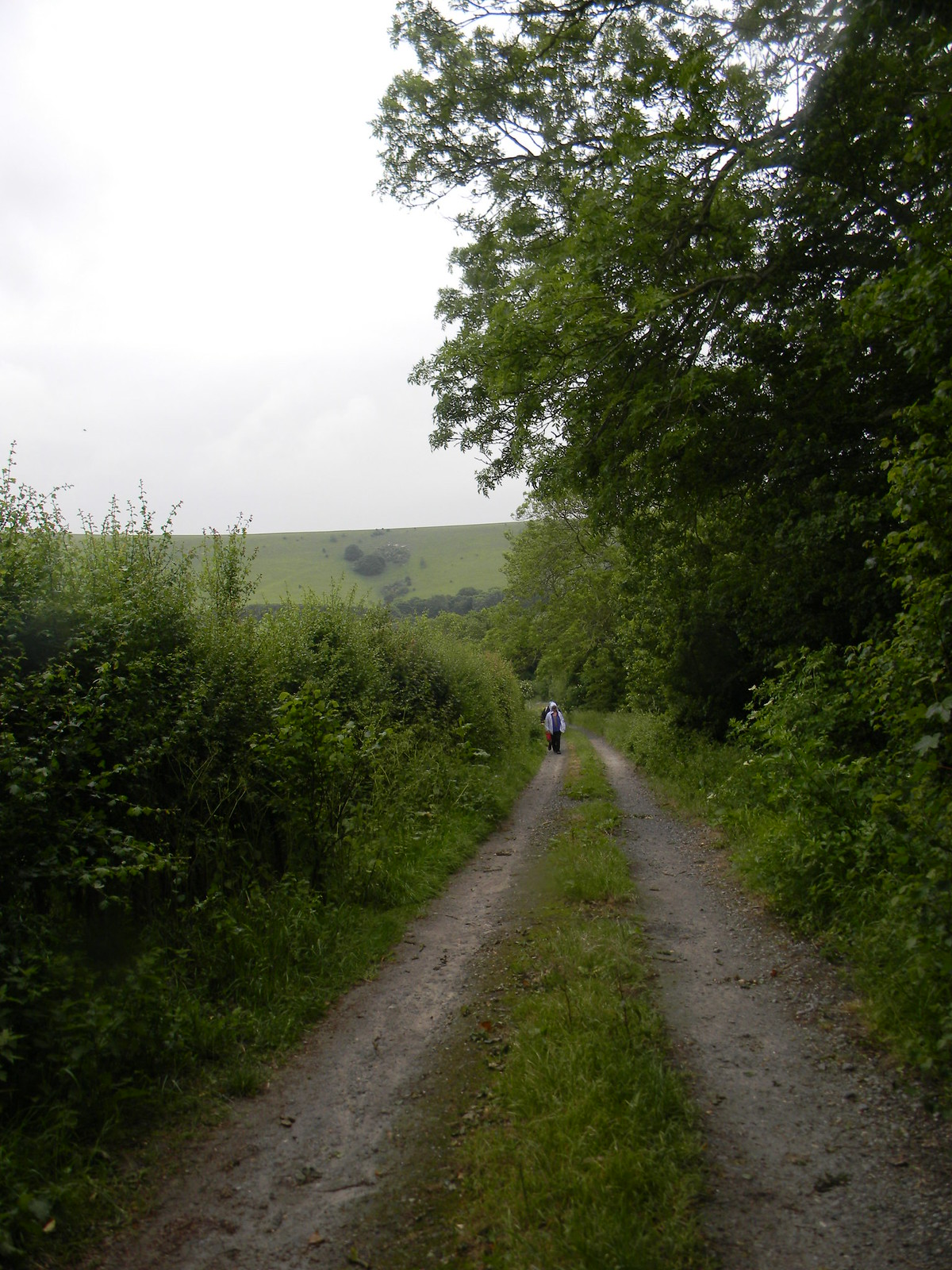 Lane Lewes to Berwick