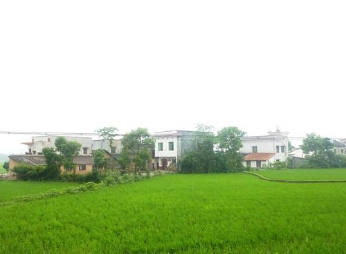 C-Hunan-Shaoshan (75)