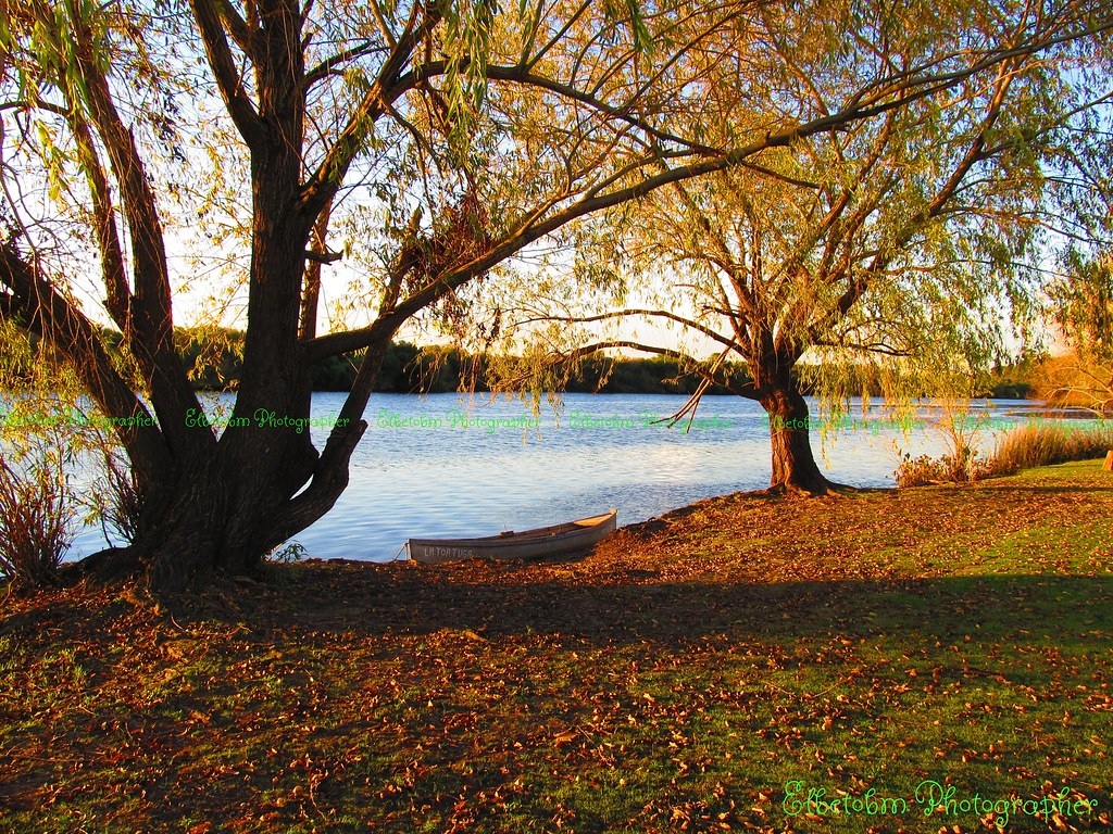 Image result for autumn uruguay
