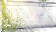 Sorbet. Customer Service