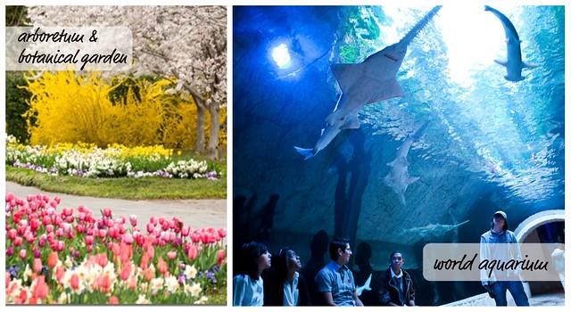 arboretum aquarium