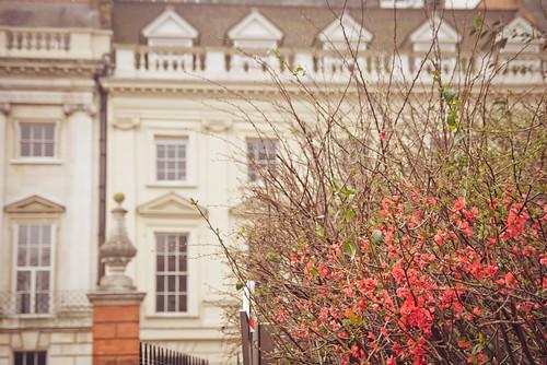 Lincoln's Inn Fields